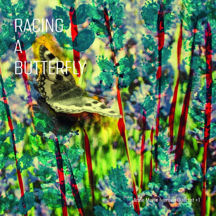Racing a Butterfly | Anne Mette Iversen