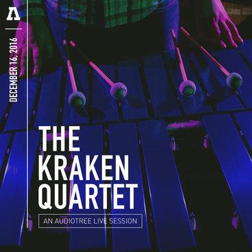 The Kraken Quartet - Audiotree Live main photo