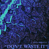 Don't Waste It (single) Cover Art