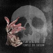 Creation / Devotion cover art
