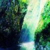 花音 Vol. 1 Cover Art