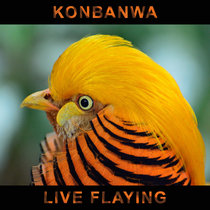 Live Flaying cover art