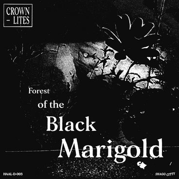 Forest of the Black Marigold main photo