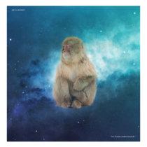 Meta Monkey cover art