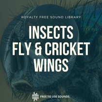 Wing Sounds Fly's & Cricket Wing Sound Effects cover art