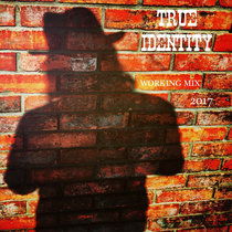 True Identity (Working Mix) cover art