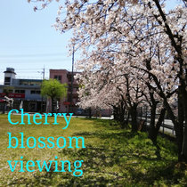 Cherry blossom viewing cover art