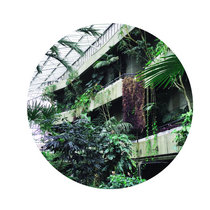 Zoo Look - Similar Steps EP cover art