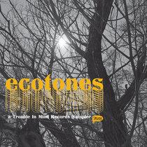 "Various Artists: ""Ecotones"" cover art"
