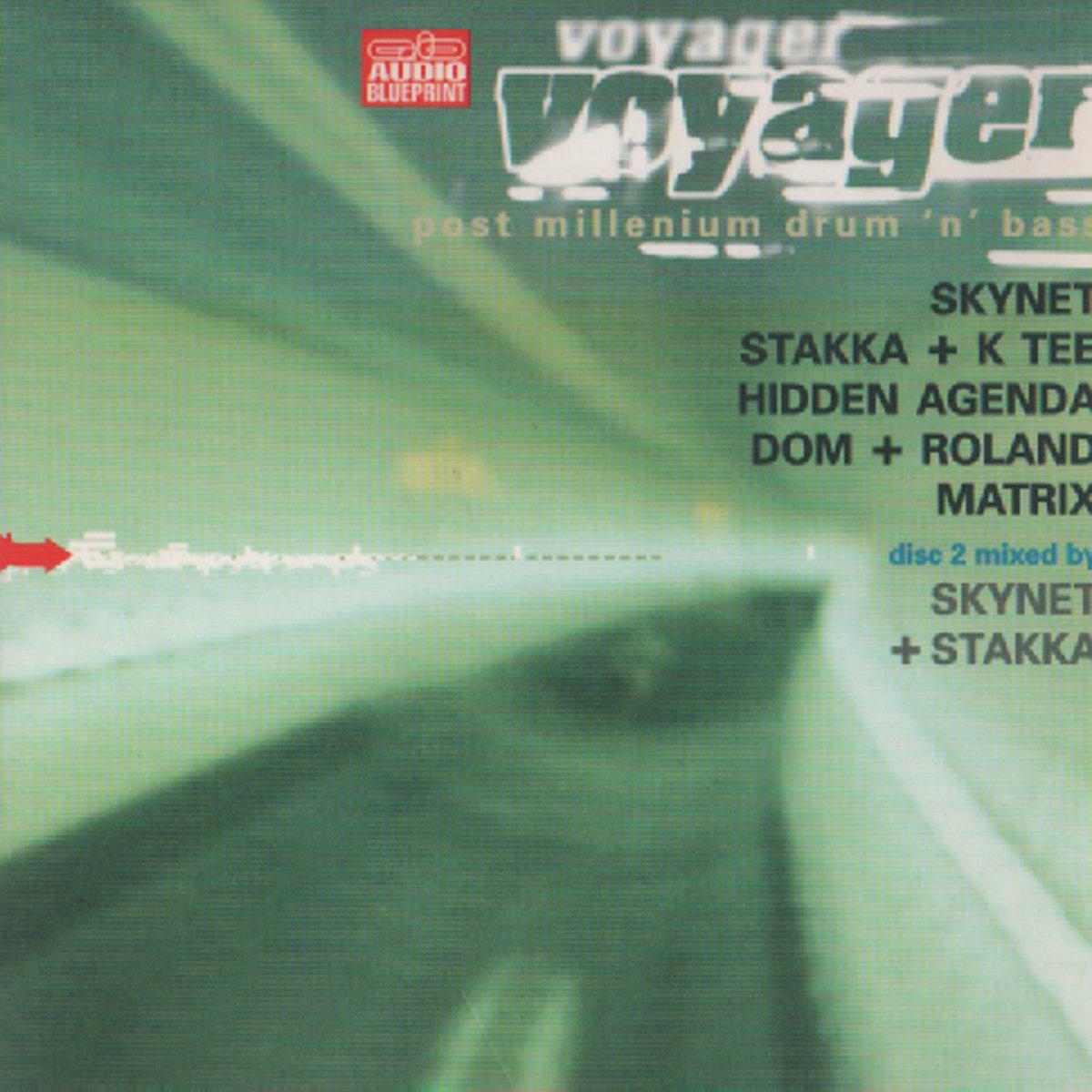 Voyager skynet by stakka skynet malvernweather Choice Image
