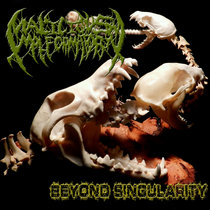 Beyond Singularity E.P. cover art
