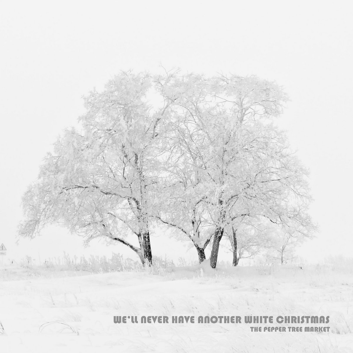 We\'ll Never Have Another White Christmas   the PEPPER TREE market