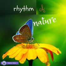 Rhythm of Nature cover art