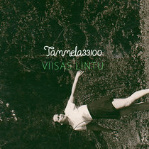 Viisas lintu cover art