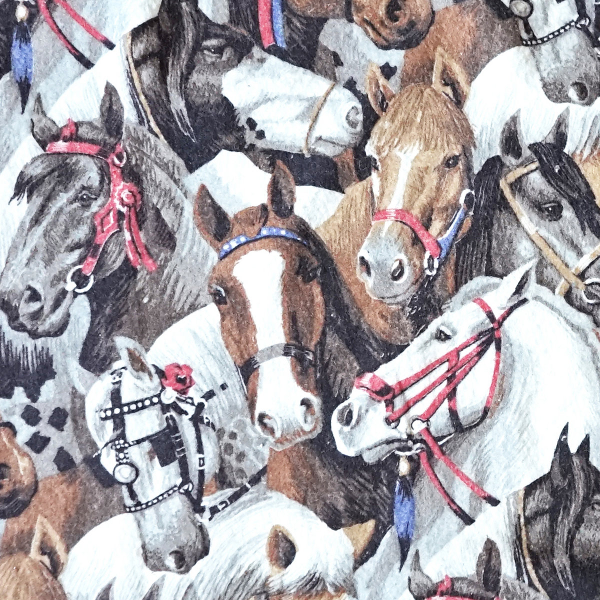 Bilderesultat for posse horse blanket