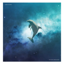 Cheeky Dolphin cover art