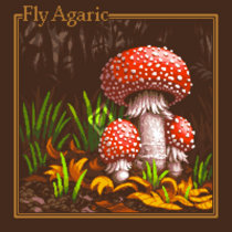 Fly Agaric cover art