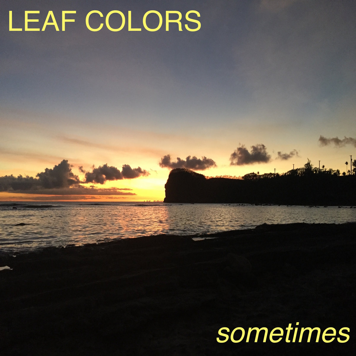 Sometimes by Leaf Colors
