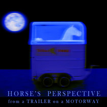 Horse's Perspective from a Trailer on a Motorway cover art