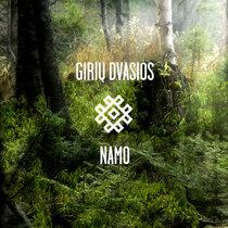 Giriu Dvasios - Namo cover art