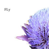 FLy cover art