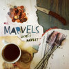 Marvels Cover Art