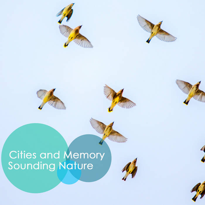 Sounding Nature - reimagined sounds - Cities and Memory