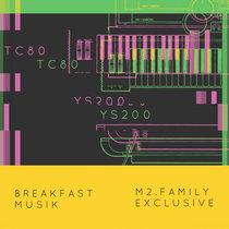 TC80 - YS2000 cover art