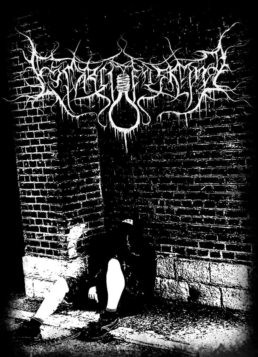esprit erroné dsbm raw black metal france le scribe du rock