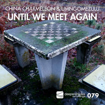 Until We Meet Again cover art