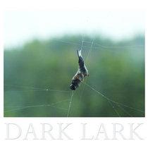 DARK LARK cover art