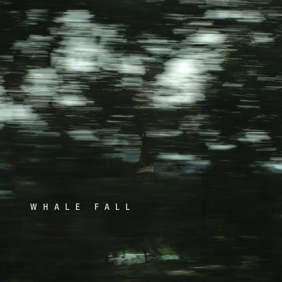 You Go Up, I Go Down | Whale Fall
