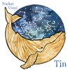 Tin (4th full length album) Cover Art