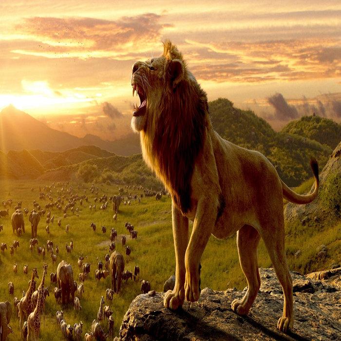 Lion King Online