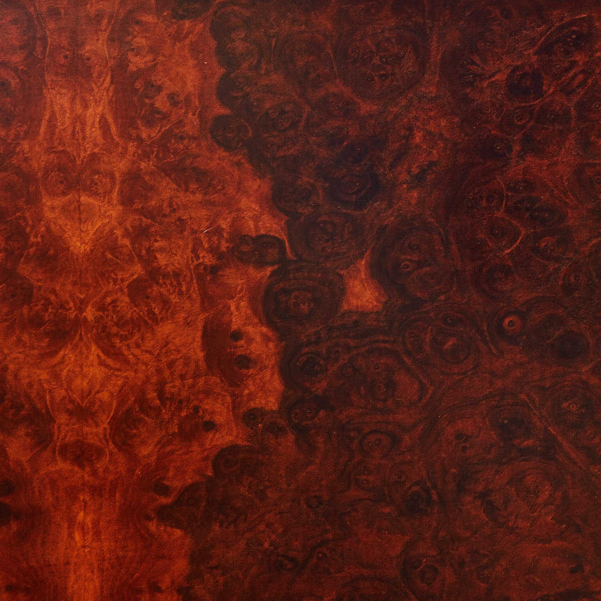 Image result for true widow avvolgere vinyl art