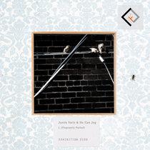 Remixes for Audiobulb cover art