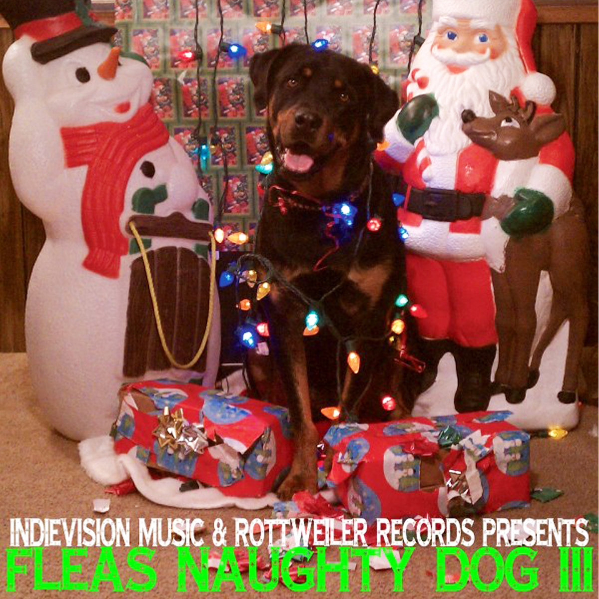 Must Build Jacuzzi – I\'m Gettin\' Nuttin\' For Christmas | Rottweiler ...