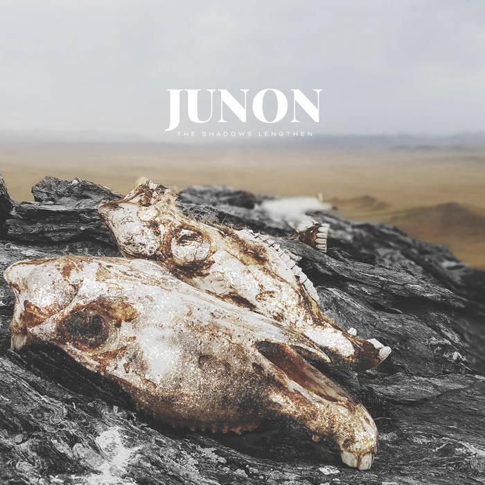 JUNON chronique le scribe du rock