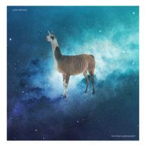 Llama Nirvana cover art