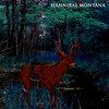 Hannibal Montana Cover Art