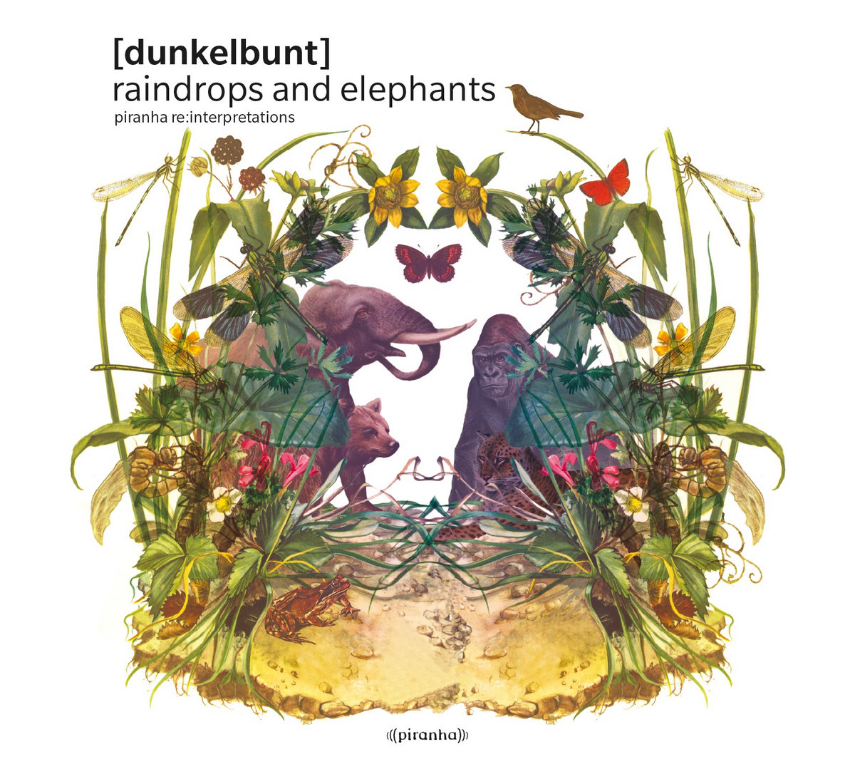 Raindrops & Elephants | dunkelbunt