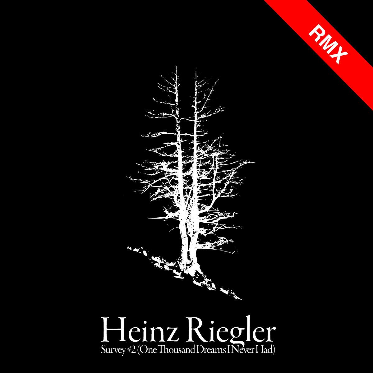 Survey #2 [REMIXES] | Heinz Riegler