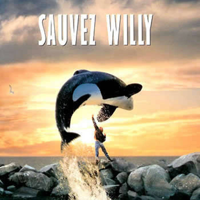 sauvez willy dvdrip