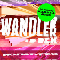 Wandler (incl. Alican Remix) cover art