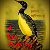 a loon ascending Cover Art
