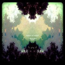 dreamlion mosaic cover art