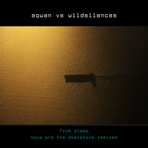 wildsilences' nova + the skeletons remixed cover art
