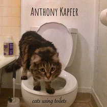 Cats Using Toilets cover art