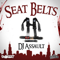 Seat Belts cover art