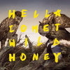 Wild Honey Cover Art